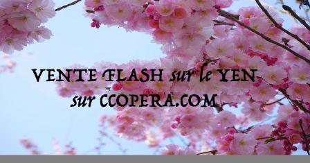 Cco : vente flash de mars 2016 ! cco change de devises en ligne